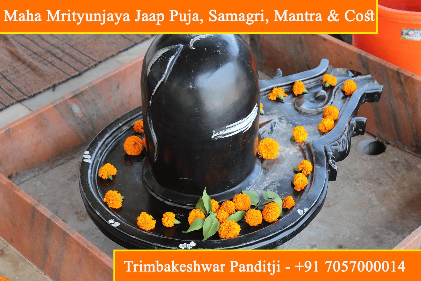 Maha Mrityunjaya Jaap Puja Vidhi, Samagri, Benefits, Cost And Mantra